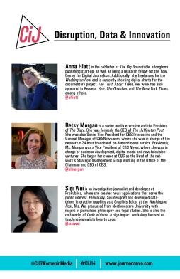 Panel 2 bios in conference program